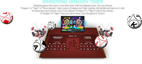 Dingdong Dragon Tiger